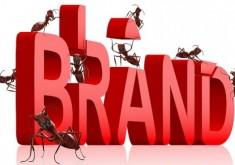 Xây dựng thương hiệu liệu có đơn giản chỉ là việc vẽ ra một logo?
